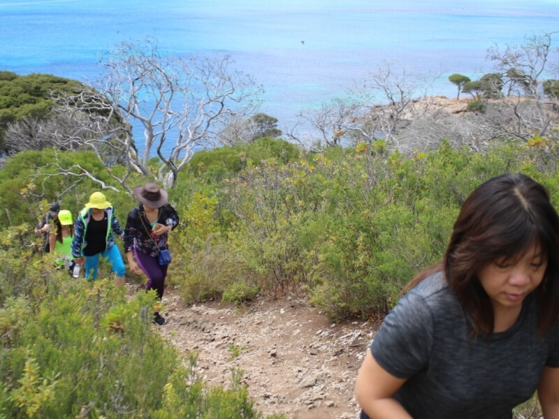 Discover The Beauty Of Nature In The Margaret River Region