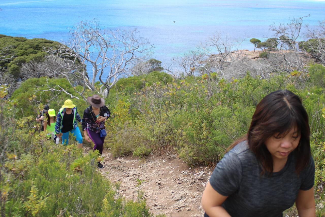 Walk section on Coastal & Wildlife Eco Tour